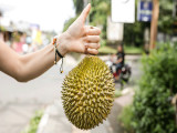 Stay and Eat Durian Package in Hotel Jen Penang from RM360