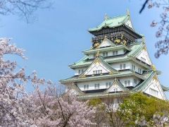 Discover Japan with Singapore Airlines from SGD678