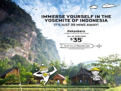 Fly to Pekanbaru from SGD35 with Scoot