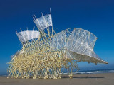 Wind Walkers: Theo Jansen's Strandbeests 1-FOR-1 Offer in Art Science Museum