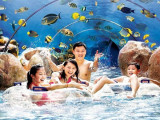Splash Out Offer in Sheraton Towers Singapore