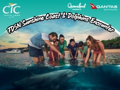 7D5N Sunshine Coast & Dolphins Encounter