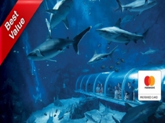 Mastercard® Exclusive: S.E.A. Aquarium + The Maritime Experiential Museum Adult One-Day Tickets + Typhoon Theatre + Voucher and Free Gift^ at SGD45