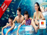 Mastercard® Exclusive: Adventure Cove Waterpark Adult One-Day Ticket + SGD5 Meal Voucher + Free Gift^ at SGD38