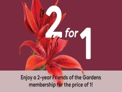 Enjoy a 2-Year Friends of the Gardens Membership for the Price of 1!