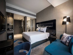 Great Singapore Sale Room Offer in Novotel Singapore On Stevens