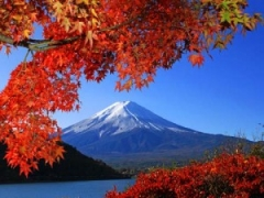 1-FOR-1 Special – 4D3N Japan Free & Easy: Plus free 7D data SIM, Sanrio Puroland ticket