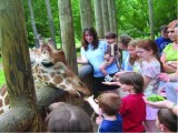 Air Mauritius School Holiday Promo from SGD1,298