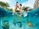 One-Day Adult Pass to Adventure Cove Waterpark Exclusive for UOB Cardholders