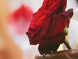 Sheraton Romance Getaway with your Love Ones