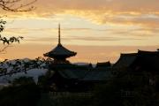 7D5N Kyushu Trail