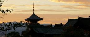 Best of Nagoya, Wakayama, Mie, & Osaka 8D5N