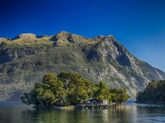 8 Days South New Zealand Tour