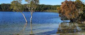 6D4N Sunshine Coast & Fraser Island Getaway
