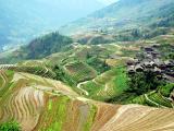 8Days Scenic Guilin + Datangwan Ethnic Village