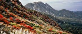 7D5N Kyushu Trail by All Nippon Airways