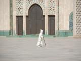 10D7N Morocco (Summer)