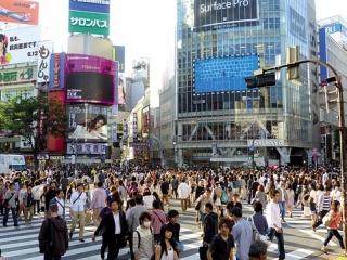 4D3N Tokyo + Hakone Free & Easy