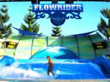 7D5N Beautiful Gold Coast, 3x Theme Parks + Hot Air Balloon!