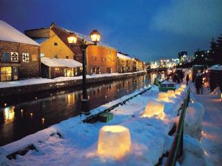 8D White Hokkaido + Tokyo