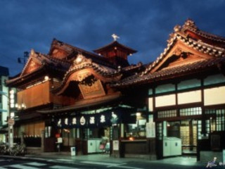 Amazing Shikoku 8D5N