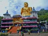 10 Days Paradise Sri Lanka Tour