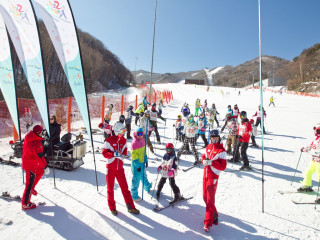 7D5N / 7D6N Korea Skiing