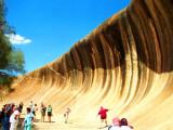 5/6 Days Perth Nature Adventure