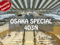 Osaka Monthly Special