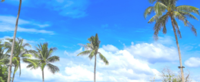 3D2N Phuket - Include Flights