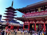 5D4N TOKYO EXPERIENCE