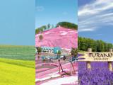 12D10N Eastern Hokkaido