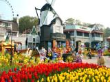 8 Days 6 Nights Captivating Spring & Summer in Korea
