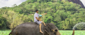 5 Nights Bliss of Sri Lanka
