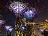 Gardens By The Bay (Flower Dome + Cloud Forest) [Open ticket]