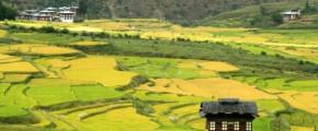 9 Days Wonderful Bhutan Tour