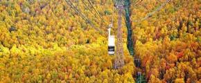 7D5N Autumn in Hokkaido