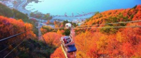 5D4N Tokyo Autumn Plus