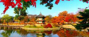 8D6N / 9D7N Autumn Love In Korea