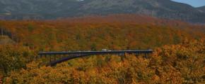 North Japan Autumn Fantasy 9D6N