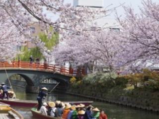 5D4N Spring in Kyushu (24 Mar)