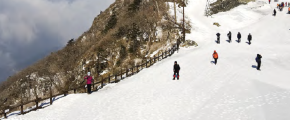 8D6N Skiing Korea + Jeju
