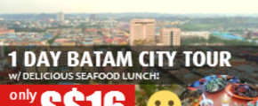 LIMITED TIME ONLY 1 Day Batam City Tour w/ Delicious Seafood Lunch!