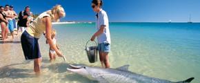 Western Australia Coral Coast Self Drive