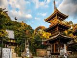7D Mysterious Hiroshima + Ehime + Naruto Whirlpool