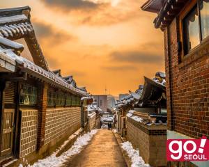 8D7N Sparkling Korea + Jeju Island(Winter)