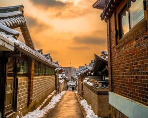 8D6N Sparkling Korea + Jeju Island(Winter)