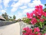 Okinawa 5D4N Free & Easy Plus