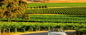 5 Days 4 Nights Adelaide & Barossa Valley