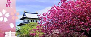 Spring @ Hokkaido 8D5N